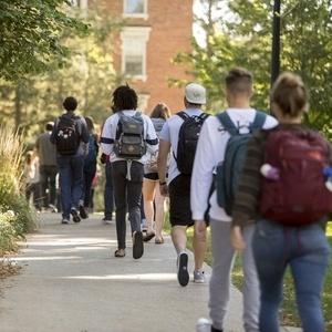 学生们正在穿过松树林