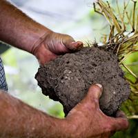 Keys to Soil Health Workshop - Adrian