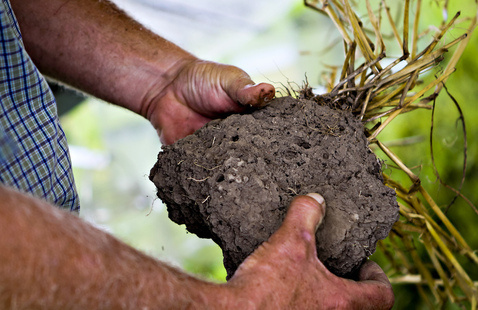 Keys to Soil Health - Owensville