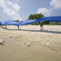 Owen Park Beach