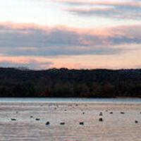 Yellow Creek State Park