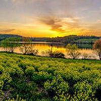 BYOK: Marsh Creek Birding by Kayak