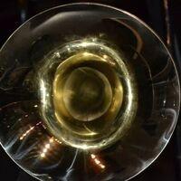 Symphonic Wind Ensemble I