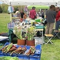 Holiday Oak Bluffs Open Market