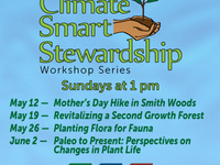 Paleo to Present: Perspectives on Changes in Plant Life