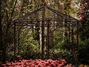 Tuesday Evenings in the Garden: Sarah Mootz