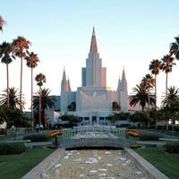 Latter-Day Saints Weekly Meeting