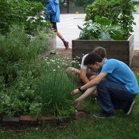 Garden Commons Summer Workdays