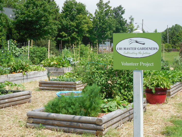 Weekly Garden Huddle In Middletown University Of Rhode Island
