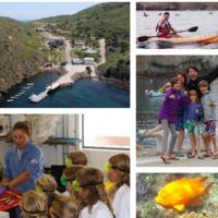 USC Wrigley Institute's Family Science Program on Catalina Island