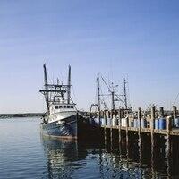 Rhode Island Marine Fisheries Institute Spring Meeting