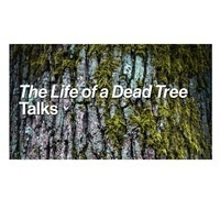 Dr. Sandy Smith Talk | 'The Life of a Dead Tree'