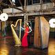 Bridget Kibbey, harp