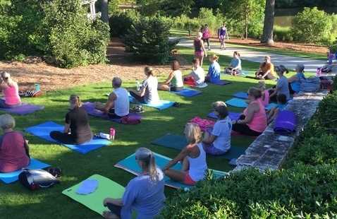 Yoga in the Park: Vines Park
