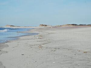 Pick It Up! Wilderness Beach Coastal Cleanup