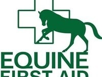 Equine First Aid: Understanding horse injuries and being prepared
