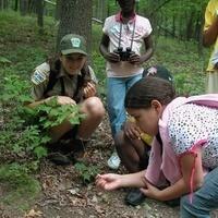 DiscoverE: Penn's Adventurers Summer Camp