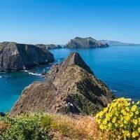 HOOT - Channel Islands National Park: Register by 7/30