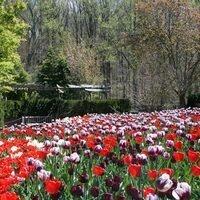 Brookside Gardens Saturday Walk