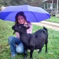 Farm Visits