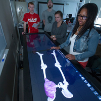 students looking at an electronic model of a skeleton
