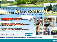 Summer of Science