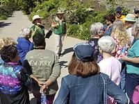 Garden & Arboretum Hikes