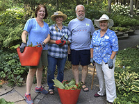 Volunteer Opportunities with Cornell Botanic Gardens