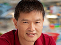 """""""Gene editing technology in plants: optimization and applications in auxin biology""""- Yunde Zhao"""