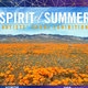 Spirit of Summer: Artists' Books Exhibition