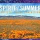 Spirit of Summer: Artists' Books Exhibition