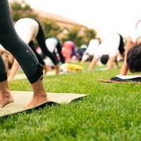 FREE Yoga at Highlands Park