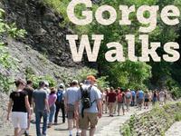 James Potorti Interpretive Gorge Walk - Robert H. Treman State Park