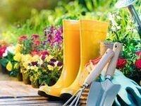 Health Bites: Gardening for Life