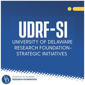 UDRF-SI Awards Announced