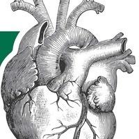 Comprehensive Cardiovascular Center 8th Annual Symposium