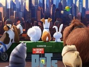 Grayson Community Movie in the Park