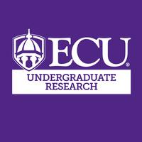 Undergraduate Research Summer Symposium
