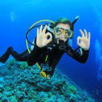 Dive Demonstration(CANCELLED)