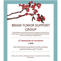 Brain Tumor Support Group