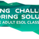 Meeting Challenges, Exploring Solutions in the Adult ESOL Classroom