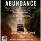 Book Talk: Abundance
