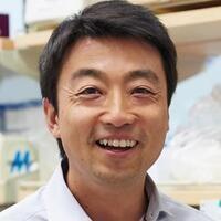 USC Stem Cell Seminar: Shingo Kajimura, University of California, San Francisco