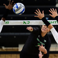 Volleyball vs. Akron