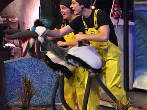 Aurora Children's Playhouse presents: Loggerhead Island