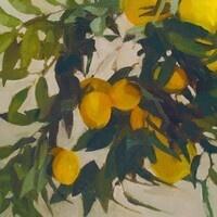 Elise Schweitzer: Container Garden