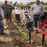 Mechanical Cultivation Field Day: Aurora