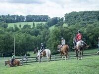 Horse Riding Excursion w/SEU Polo Club