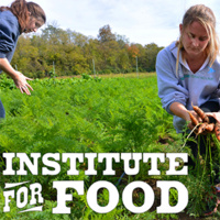 institute for food. students picking crops