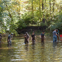 students wading in water